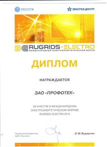 Diploma for participation in the exhibition «RuGrids-Electro»